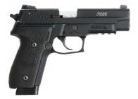 Sig Sauer P229 22LR 10rd Handgun