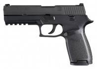 Sig Sauer P250 Full Size 45ACP 10rd Handgun